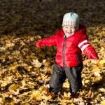 Little boy walking in the autumn park — Stock Photo #33955339