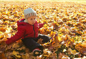 The surprised little boy sitting on a glade among autumn leaves — Stock Photo