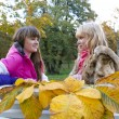 Two beautiful girls  in autumn park — Stock Photo