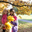 Two beautiful girls  in autumn park — Foto Stock