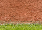 Texture of the red rough plastered wall with grass and flowers  — Foto de Stock