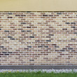 Wall from the made old brick with green grass and yellow flowers — Stock Photo #49021053