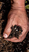 Mans hand gripping soil — Stock Photo