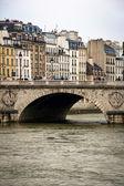 Parisian bridge view — Stockfoto