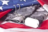U.S. Veteran Memorial — Stock Photo