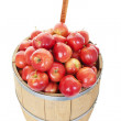 Stock Photo: Apple Barrel