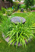 Bird Bath Garden Feature — Stock Photo