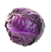Purple Cabbage Head — Stock Photo