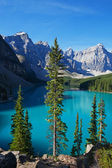 Good Morning Moraine Lake — Stock Photo