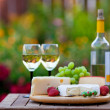 图库照片: Wine & Cheese Garden Party