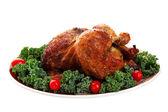 Festive Holiday Bird — Stock Photo