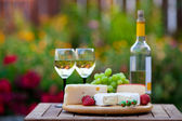 Wine & Cheese Garden Party — Foto de Stock