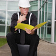 Stock Photo: Inspector With File