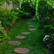 Foto Stock: Shady Garden Path