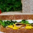 Nutritious Chicken Sandwich — Foto Stock