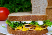 Nutritious Chicken Sandwich — Stock Photo