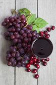 Cranberry Grape Juice — Stock Photo