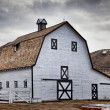 Stock Photo: Echodale Barn