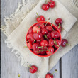 Bowl of Cherries — Foto de Stock