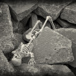 Stock Photo: Apocalypse Skeleton