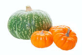 Pumpkins & Squash — Stock Photo