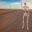 Country Roads Skeleton — Stock Photo