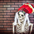 Stock Photo: Native AmericSkeleton