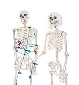 Captive Christmas Skeleton — Stock Photo