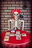Tarot Reading Skeleton — Stock Photo