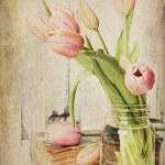 Vintage Pink Tulips — Stock Photo