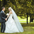 Bride and groom dancing together outside on their wedding day - — Stock Photo #12883272