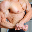 Muscled male model arms with torso - Stock Photo