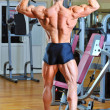 Bodybuilder posing at gym - back view full lenght portrait - Stock Photo