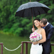Romantic wedding couple kissing in a rainy day — Stock Photo