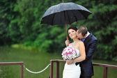Romantische bruidspaar zoenen in een regenachtige dag — Stockfoto