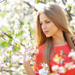 Close up of a beautiful woman face in blooming spring tree — Stock Photo