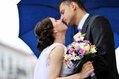 Bride and groom. Kissing wedding couple — Stock Photo