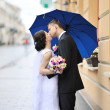 kissing wedding couple — Stock Photo #27343611