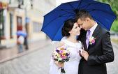 Svatební pár - ženich a nevěsta — Stock fotografie