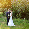 Young happy bride and groom in a park. Wedding couple — Stock Photo #30912809