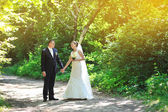 Happy bride and groom walking in a summer park — Stock Photo
