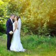 Bride and groom in park — Stock Photo #30929715