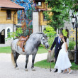 Bride and groom in park with horse — 图库照片