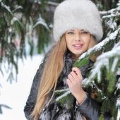 Beautiful woman in winter — Stock Photo