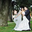 Wedding. Hugging bride and groom — Stock Photo