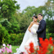 Wedding — Stock Photo #34417503