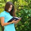 Young beautiful girl reading book in a park  — Stock Photo