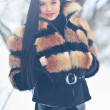 Portrait of a beautiful woman in winter — Stock Photo