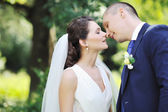 Kissing wedding couple - close up — Stock Photo