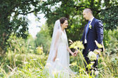 Bride and groom in summer sunny day - portrait — Stock Photo